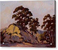 Ridge Eucalyptus Acrylic Print