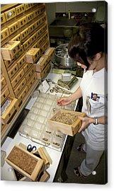 Kampo Japanese Traditional Medicine Acrylic Print