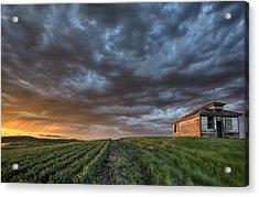 Newly Planted Crop Acrylic Print by Mark Duffy