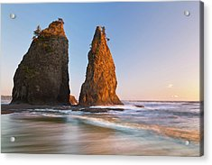 Usa, Washington, Olympic National Park Acrylic Print by Jaynes Gallery