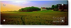 Acrylic Print featuring the photograph  Conley Rd Spring Pasture Oaks And Barn  by Tom Jelen