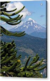 Huerquehue National Park, Chile Acrylic Print