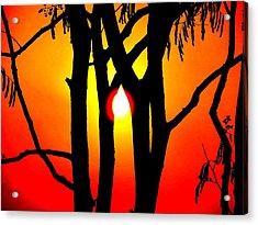 Nature Acrylic Print by Viren Rana
