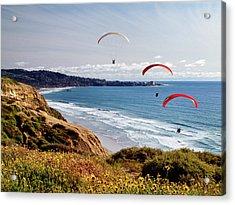 Usa, California, La Jolla Acrylic Print by Ann Collins