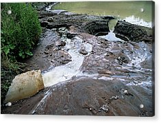 Water Pollution Acrylic Print by Robert Brook/science Photo Library
