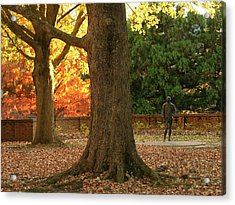William And Mary College Acrylic Print by Jacqueline M Lewis