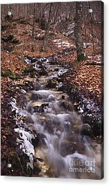 Wintertime In Abruzzo National Park Acrylic Print by George Atsametakis
