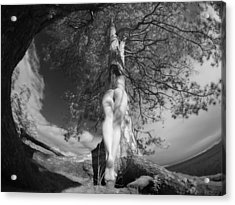 9102 Tree Of Life Nude By Pine Acrylic Print