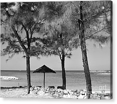 A Bahamas Scene In Black And White Acrylic Print