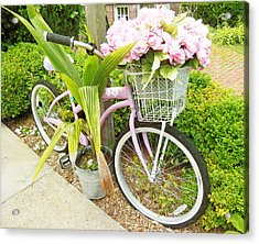 Acrylic Print featuring the photograph A Basket Of Peonies by Rosemary Aubut