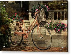 A Basketful Of Spring Acrylic Print by HH Photography of Florida