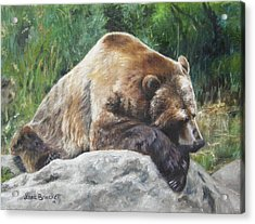 A Bear Of A Prayer Acrylic Print by Lori Brackett