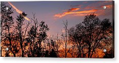 Acrylic Print featuring the photograph A Beautiful Ending by Candice Trimble
