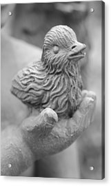 A Bird In The Hand Acrylic Print by Sarah Klessig