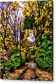 A Bit Of Autumn Acrylic Print by Aleksander Rotner