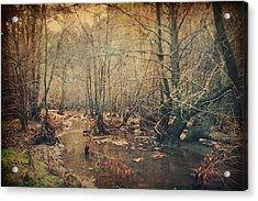 A Bitter Cold Acrylic Print by Laurie Search