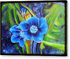 Exotic Blue Flower Prize For Blue Dragonfly Acrylic Print by Kimberlee Baxter