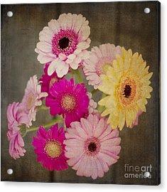 A Bouquet Of Gerbera Daisies Acrylic Print