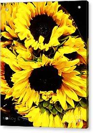 A Bouquet Of Sunshine  Acrylic Print by Nancy E Stein