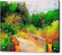 Bridge To Nature  Acrylic Print by Rick Todaro