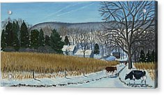 A Bright Blue Winter Day At Bear Meadows Farm Acrylic Print