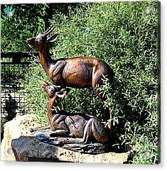 A Buck And His Doe Acrylic Print