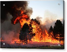 Acrylic Print featuring the photograph A Burst Of Flames From The White Draw Fire by Bill Gabbert
