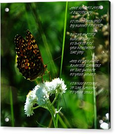 A Butterfly Poem About Love Acrylic Print by Jeff Swan