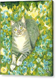 A Cat And Flowers Acrylic Print