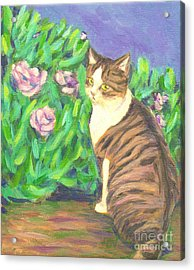 A Cat At A Garden Acrylic Print