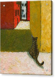 A Cat Waiting For Someone's Return Acrylic Print