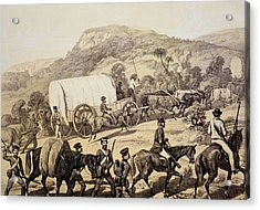 A Convoy Of Wagons Acrylic Print by English School