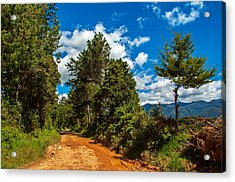A Country Road In Colombia. Acrylic Print by Jess Kraft