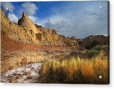 A Coyote At Pawnee Arroyo Acrylic Print by Ric Soulen