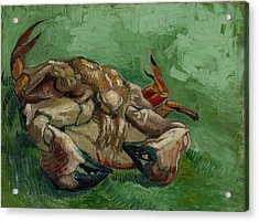 A Crab On Its Back Acrylic Print by Vincent van Gogh