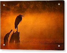 A Cry In The Mist Acrylic Print
