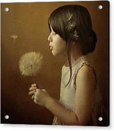 A Dandelion Poem Acrylic Print by Svetlana Bekyarova