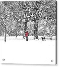 A Dash Of Red Acrylic Print by Karin Ubeleis-Jones