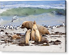 A Day At The Beach Acrylic Print by Mike Dawson