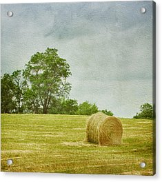 A Day At The Farm Acrylic Print by Kim Hojnacki