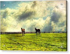 A Day In Kentucky Acrylic Print