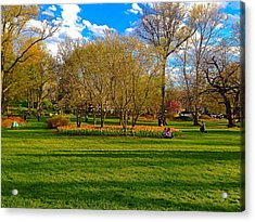 A Day In The Park Acrylic Print