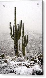 A Desert Southwest Snow Day  Acrylic Print by Saija  Lehtonen