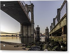Acrylic Print featuring the photograph A Different Look  by Anthony Fields