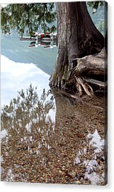 A Different Perspective Acrylic Print by Heather Kenward