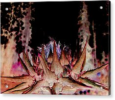 A Difficult Path  Acrylic Print by Shirley Sirois