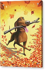 A Dog Carries A Stick Through Fall Leaves Acrylic Print