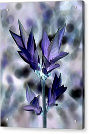 A Dream Of Spring Acrylic Print by Bishopston Fine Art