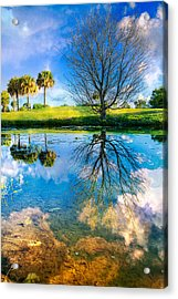 A Dreamy Day Acrylic Print by Debra and Dave Vanderlaan