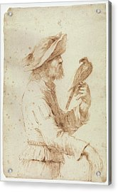 A Falconer In Profile To The Right Acrylic Print by Follower of Guercino